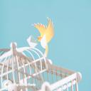 Birds Delivering Letters To Birdcage Handmade 3D Pop Up Card #2955
