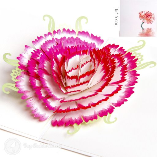 This stunning greetings card opens to reveal a gorgeous pink and white carnation flower with delicate pale green leaves behind it. The colour has a beautiful water-colour design showing a carnation flower reflected in shimmering water.