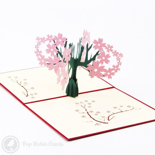 This stylish greetings card opens to reveal a 3D pop-up design showing a wide cherry tree brimming with blossom. A choice of autumnal red or pastel pink colours are available.