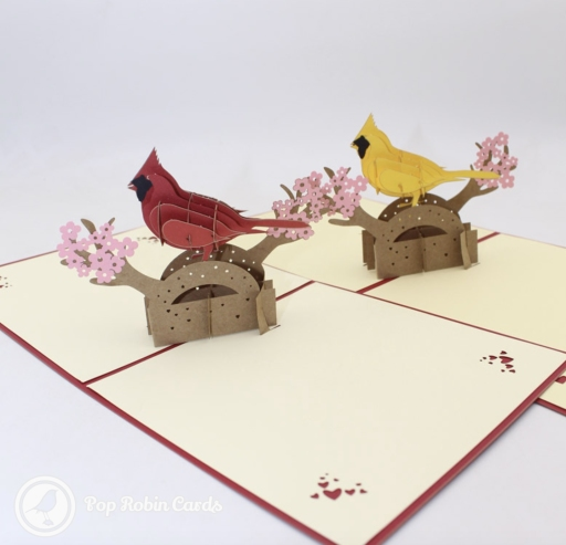 This beautiful greetings card opens to reveal a 3D pop-up design showing a cockatoo parrot (either red or yellow), perched on a branch with blossom. The cover has a stencil design showing a stylised cockatoo.