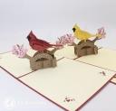Cockatoo Parrot Handmade 3D Pop Up Card #3318