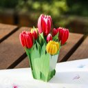 Colourful Tulips 3D Pop Up Greetings Card (Standard) 1905