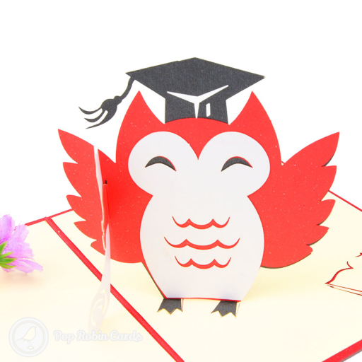 This graduation congratulations card has a 3D pop up design showing an owl with a square academic cap, and stencilled books to the side. The cover has a stencil design showing the owl graduating.