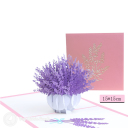 3D Pop-Up Greetings Card #3190