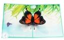 Monarch Butterfly In Meadow Handmade 3D Pop-Up Card #2883