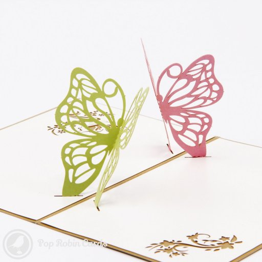 This pretty greetings card opens to reveal an amazing 3D pop-up design showing two butterflies suspended in the air. The cover has a stencil design showing a butterfly with flowers.