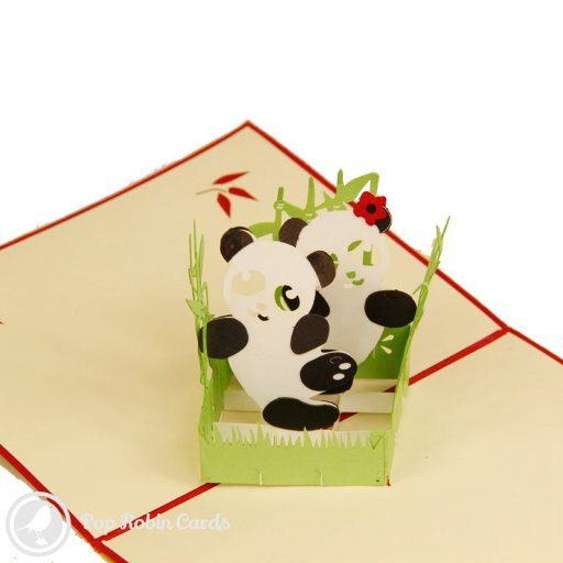 This charming greetings card opens to reveal a 3D pop-up design showing two cute pandas together in a bamboo glade. The cover has a stenciled panda motif.