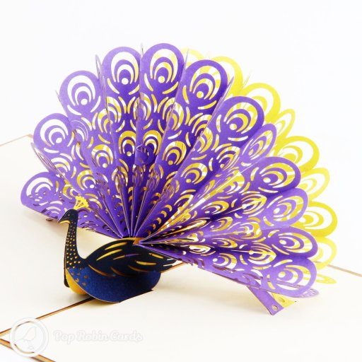 This stunning card opens to reveal a 3D peacock design with a turquoise body and a wide tail in purple and orange. The outside shows a stylish peacock stencil design.