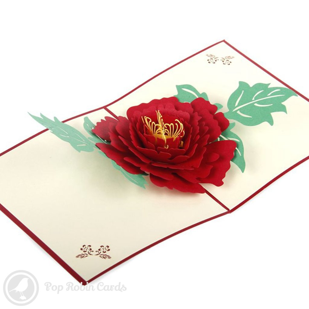 Peony Flower 3D Pop-up Greetings Card 1430