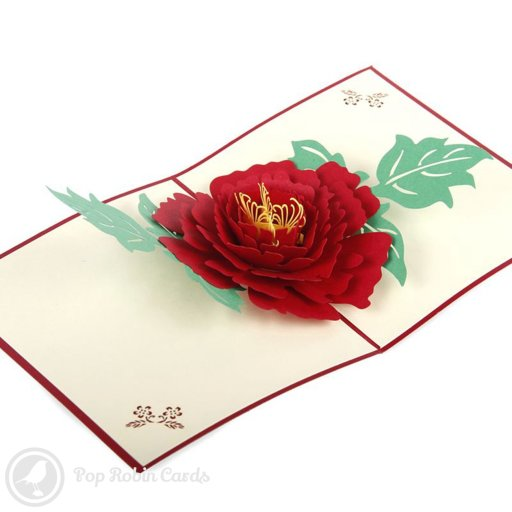 This beautiful greetings card opens to reveal an intricate 3D pop-up peony flower with red petals and green leaves. The outside shows a delicate peony stencil design.