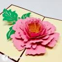 3D Pop-Up Greetings Card #3139