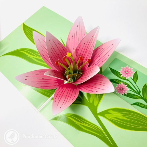 This gorgeous greetings card is perfect for all sorts of occasions, with its stunning 3D pop up design showing a pretty pink lily flower with green leaves and lots of eye-catching details. A separate insert card for your message makes it extra special. The cover has an elegant floral design showing more lily flowers in white and pink colours.