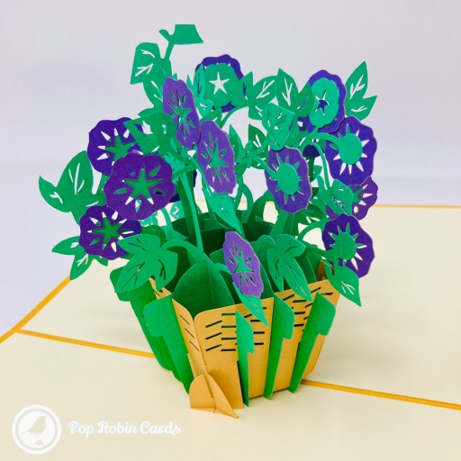 This beautiful greetings card is perfect for all sorts of occasions, with its 3D pop up design showing a basket of vivid purple morning glory flowers with green stems and leaves.
