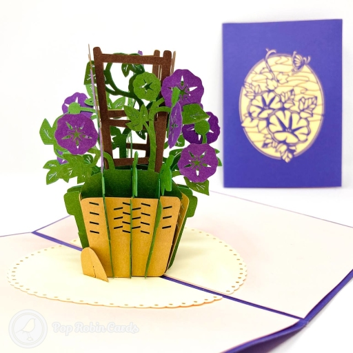 This cute and beautiful greetings card has a 3D pop up design showing a basket of vivid purple morning glory flowers with green stems and leaves growing their way up a trellis. The cover has a stylised stencil design showing morning glory flowers.