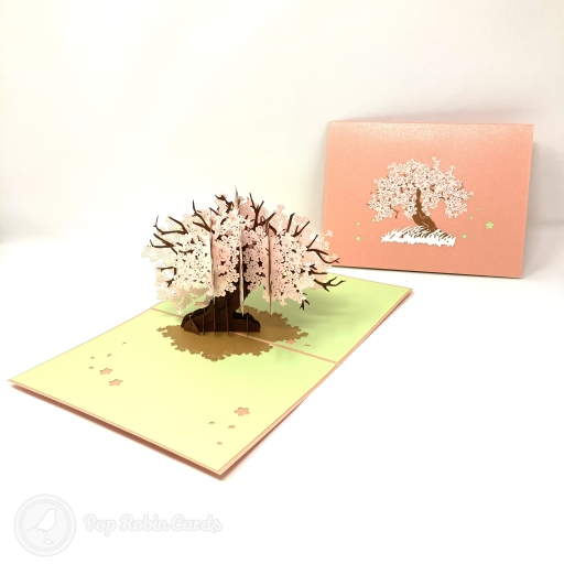 This beautiful and special greetings card opens to reveal a stunning 3D pop up design showing an ancient cherry blossom tree casting a patch of shade on the ground under its pink blossom petals. The cover design also shows the cherry blossom tree surrounded by wild grass.