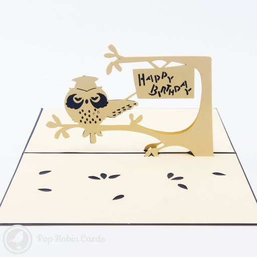 "This smart greetings card shows an owl wearing a graduate's cap sitting on a tree in a 3D pop-up design. A sign reading ""Happy Birthday"" is shown higher up in the tree. This is a perfect birthday card for an aspiring student or recent graduate, and is available with a red or blue cover."