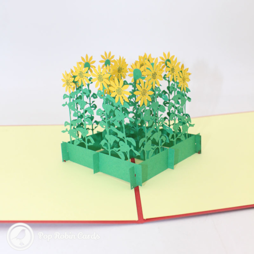 This 3D pop up greetings card shows a grove of tall yellow sunflowers growing in a bed. The cover has a stylish stencil design also showing sunflowers.