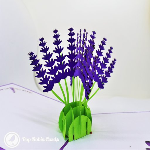 This beautiful floral card opens to reveal a 3D pop-up design with tall lavender flowers in bright purple on green stems. The cover has a stylish stencil design.