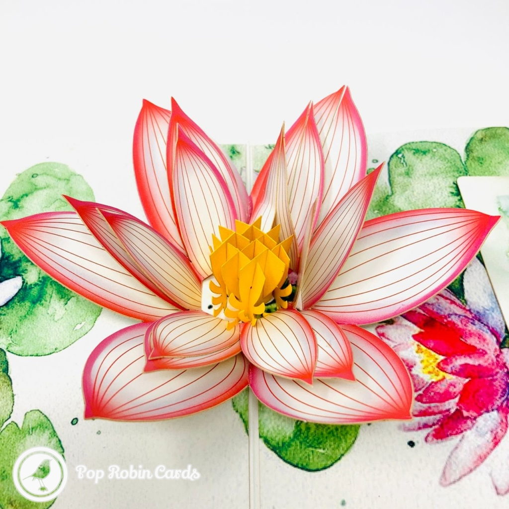 Watercolour Water Lily 3D Pop Up Greetings Card #3599