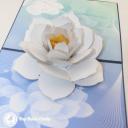 White Lotus On Pool 3D Greetings Card #3393
