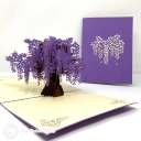 Wide Blossoming Purple Japanese Wisteria Tree #3781