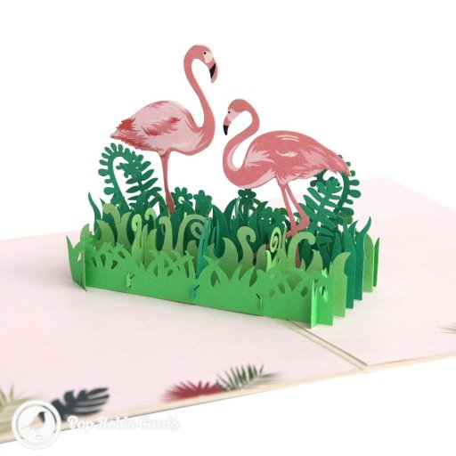 This wonderful card opens to reveal a 3D pop-up design showing two elegant pink flamingo birds standing in luscious green grasses. The cvoer has a stencilled design showing a flamingo.