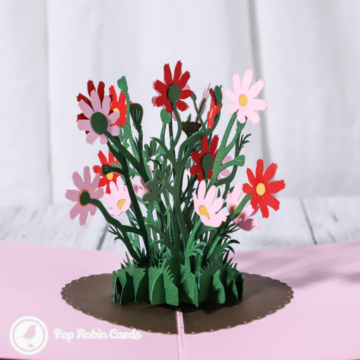 This pretty greetings card has a 3D pop up design depicting a patch of wild pink and red daisy flowers with green stems on a pink background. The cover has a stylish design with a single daisy flower and embossed details.